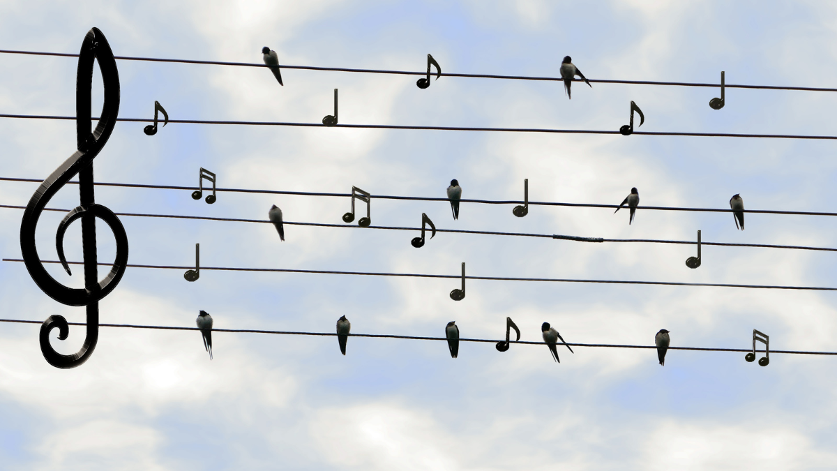 Music notes dotted around the image with the sky as background
